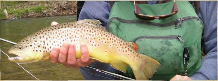 Slate Run Tackle Shop - Fly Fishing In PA
